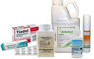 Состав и инструкция по применению Тиабендазола от паразитов