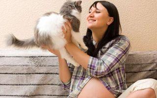 Что значит обнаружены антитела токсоплазма igg при беременности