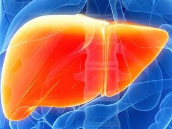 Симптомы, диагностика и лечение Фасциолы Гепатики у человека