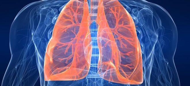 Глисты в сердце человека: симптомы, лечение