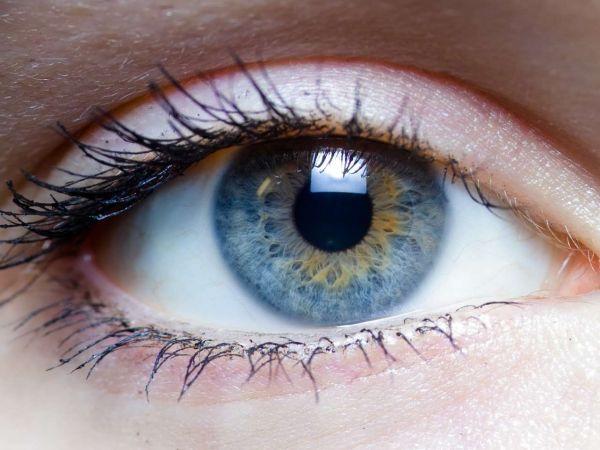 Симптомы и лечение глистов в глазах у человека