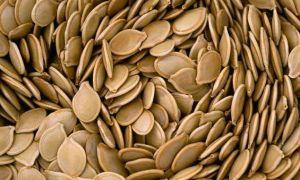 Применение народных средств от паразитов в организме человека