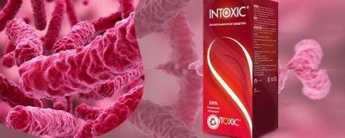 Реальные отзывы о Intoxic – эффективном препарате от глистов