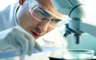 Норма и расшифровка анализа крови на антитела IgG к аскаридам