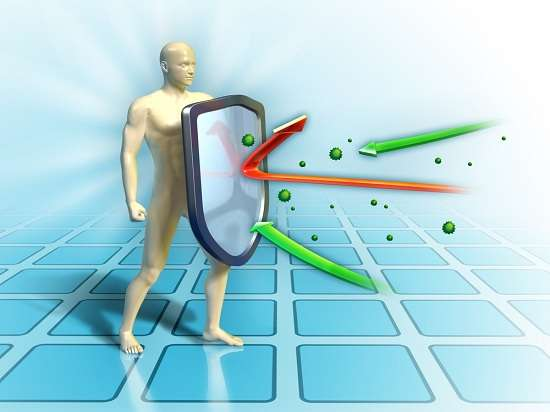 иммунитет борьба