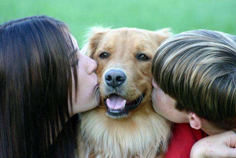 целуют собаку