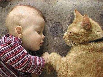 кот с ребенком