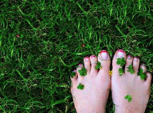 босые ноги на траве