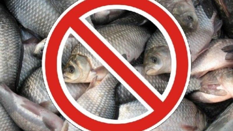 запрет рыбы