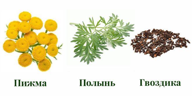 Состав Эвалар