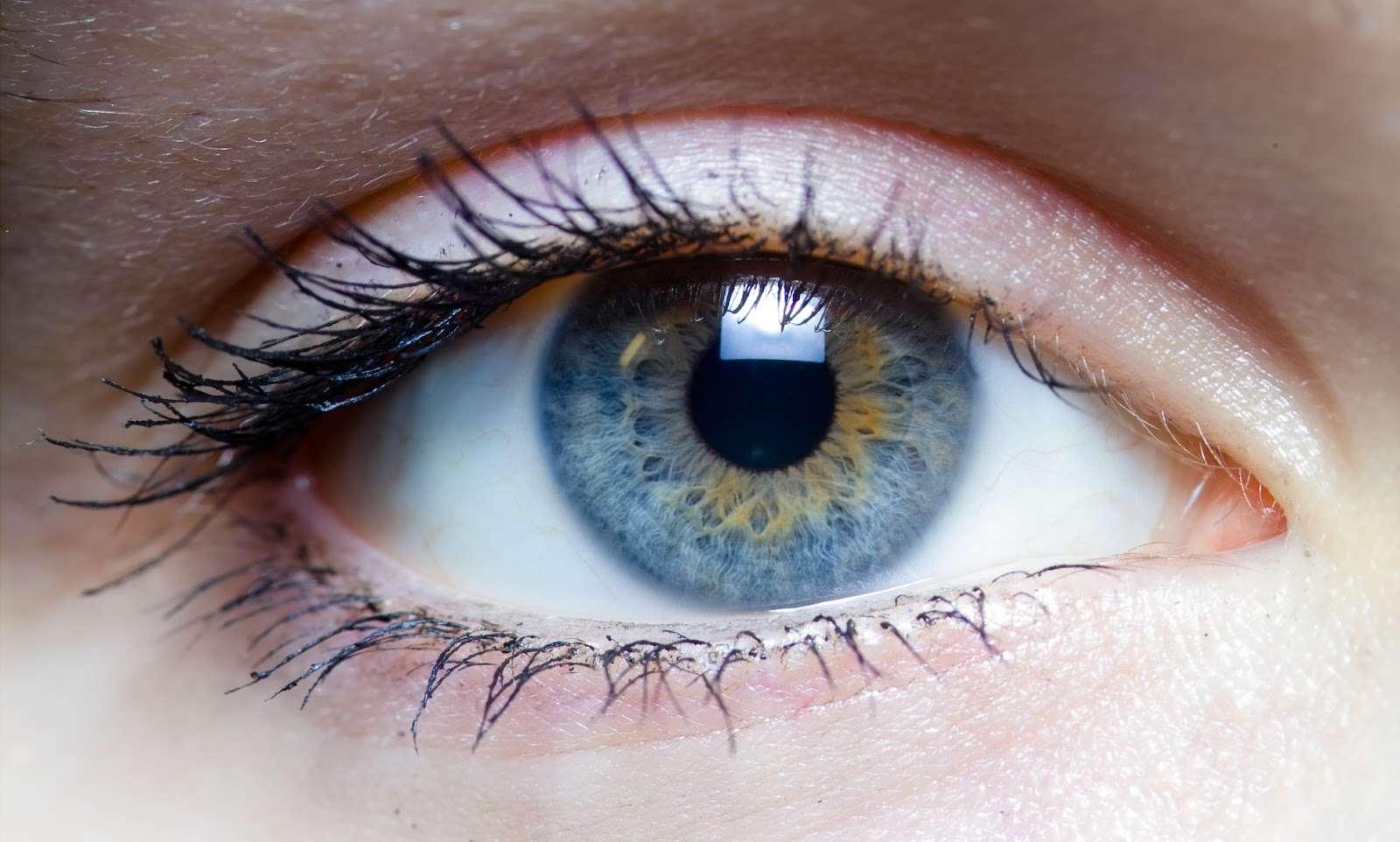 Виды глистов, обитающих в глазах