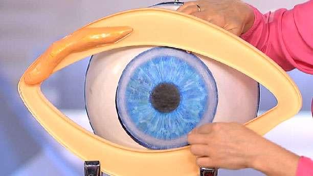 Виды глистов в глазах