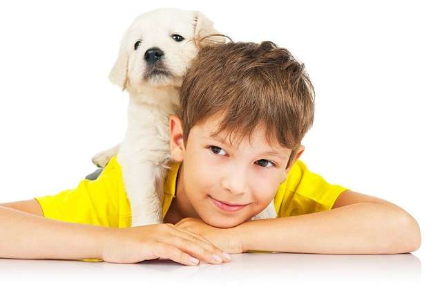контакт с животным