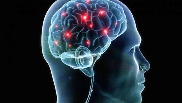 мозговые паразиты