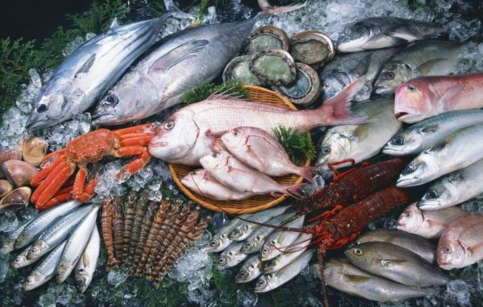 рыба укус