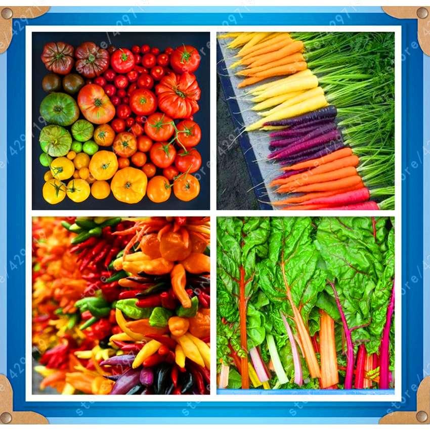 все виды перца и морковь