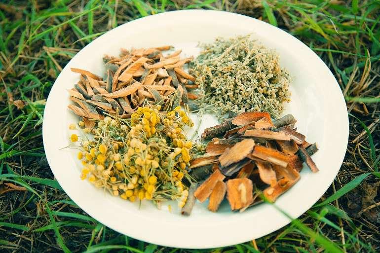травы в тарелке