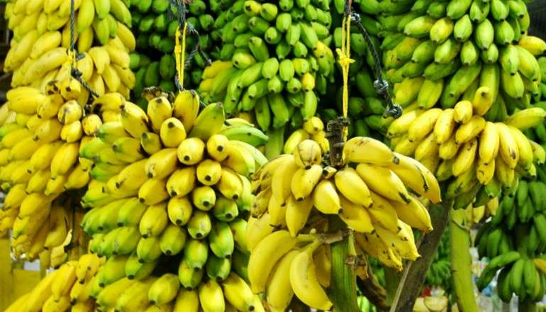 бананы пища