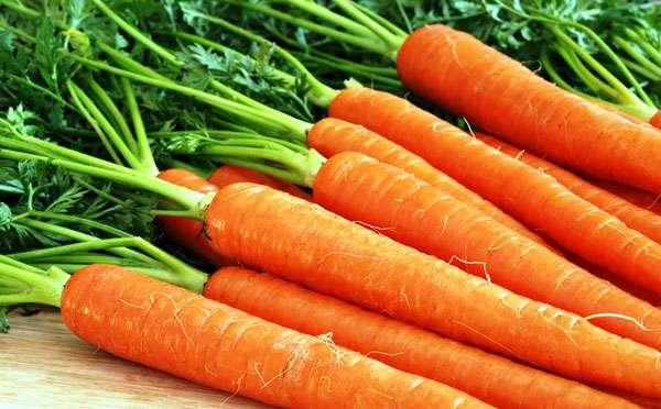 морковь очищение