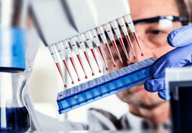 Иммуноферментный анализ крови на паразитов