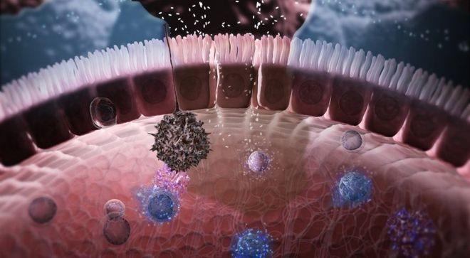 Иммуноферментная методика